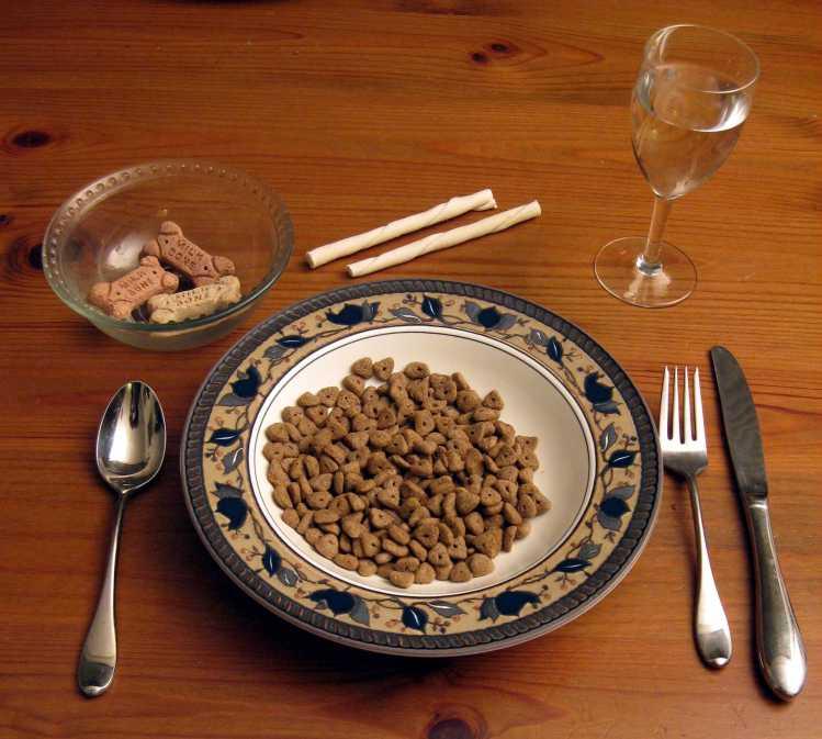 dog-food-lo-res