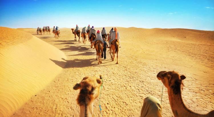 Morocco-Camel-Trekking