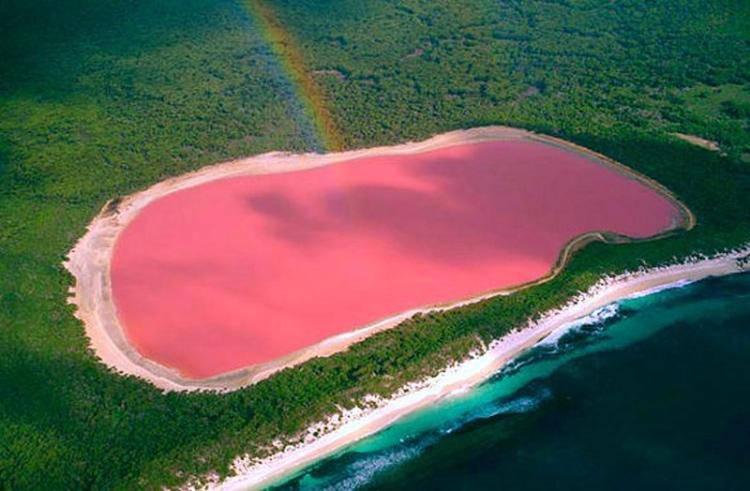 swim-in-lake-hillier-australia-2